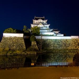 大阪gardenのサプライズプロポーズ 岸和田城