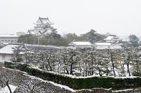 雪の岸和田城