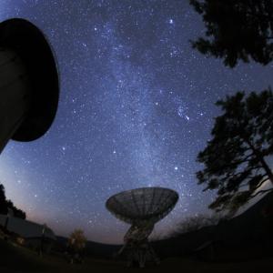 大阪でサプライズプロポーズ 星の動物園 みさと天文台