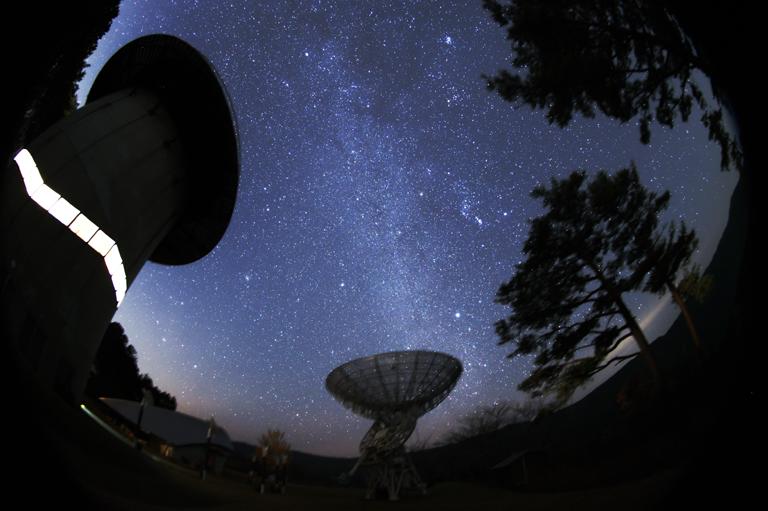 大阪のサプライズプロポーズ 星の動物園 みさと天文台
