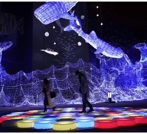 大阪gardenのサプライズプロポーズ 海遊館