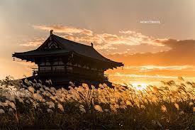 大阪でサプライズプロポーズ 雄大な歴史の中で愛を告げる…  奈良 朱雀門