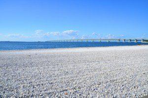 大阪gardenのサプライズプロポーズ りんくうマーブルビーチ・:*