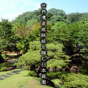 大阪のサプライズプロポーズ 好古園