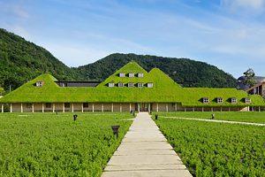 大阪gardenのサプライズプロポーズ 近江八幡 花の水郷巡り 船上での思い出作り