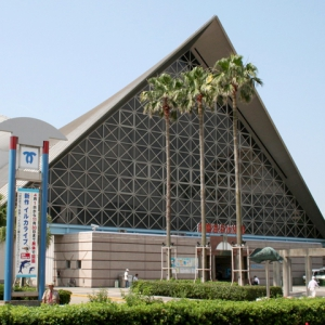 大阪でサプライズプロポーズ 神戸市立須磨海浜水族園