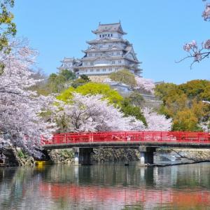 大阪でサプライズプロポーズ 姫路城