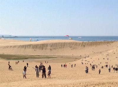 砂丘ハングライダー