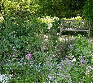 大阪gardenのサプライズプロポーズ 西宮市北山緑化植物園