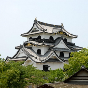 大阪gardenのサプライズプロポーズ 彦根城