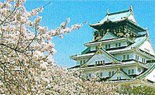 大阪gardenのサプライズプロポーズ 大阪城公園