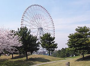 大阪でサプライズプロポーズ 葛西臨海・海浜公園
