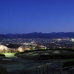 大阪でサプライズプロポーズ 笛吹川フルーツ公園