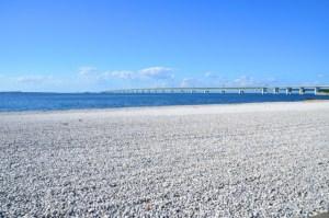 大阪のサプライズプロポーズ りんくうマーブルビーチ・:*