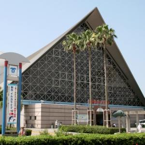 大阪gardenのサプライズプロポーズ 神戸市立須磨海浜水族園