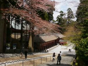 大阪のサプライズプロポーズ 比叡山・ガーデンミュージアム比叡
