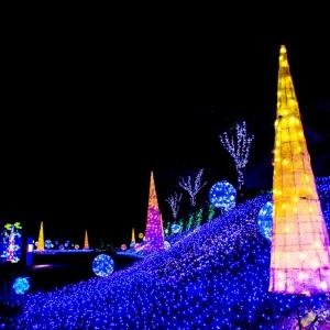 大阪gardenのサプライズプロポーズ 丹後王国イルミネーション