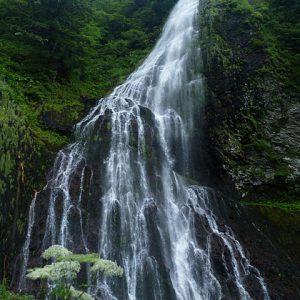 大阪gardenのサプライズプロポーズ 百間滝