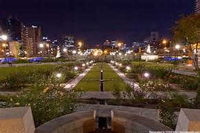 大阪gardenのサプライズプロポーズ 中之島公園 バラ園