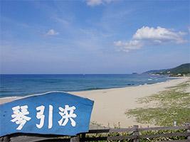 大阪gardenのサプライズプロポーズ 琴引浜