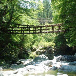 大阪gardenのサプライズプロポーズ 奥祖谷二重かずら橋