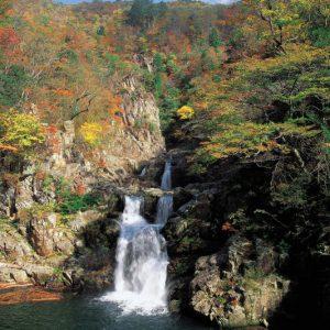 大阪gardenのサプライズプロポーズ 三段峡