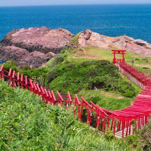 大阪gardenのサプライズプロポーズ 元乃隅稲成神社