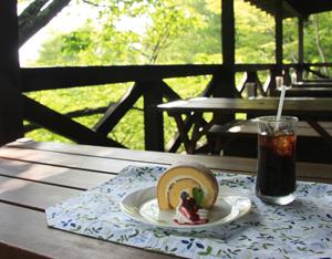 大阪gardenのサプライズプロポーズ 六甲高山植物園
