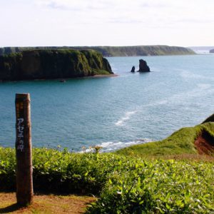 大阪gardenのサプライズプロポーズ アゼチの岬