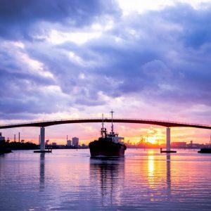 大阪gardenのサプライズプロポーズ 中の島大橋