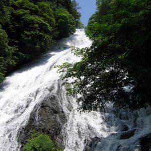 大阪gardenのサプライズプロポーズ 湯滝