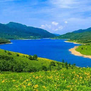 大阪gardenのサプライズプロポーズ 野反湖