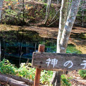 大阪gardenのサプライズプロポーズ 神の子池