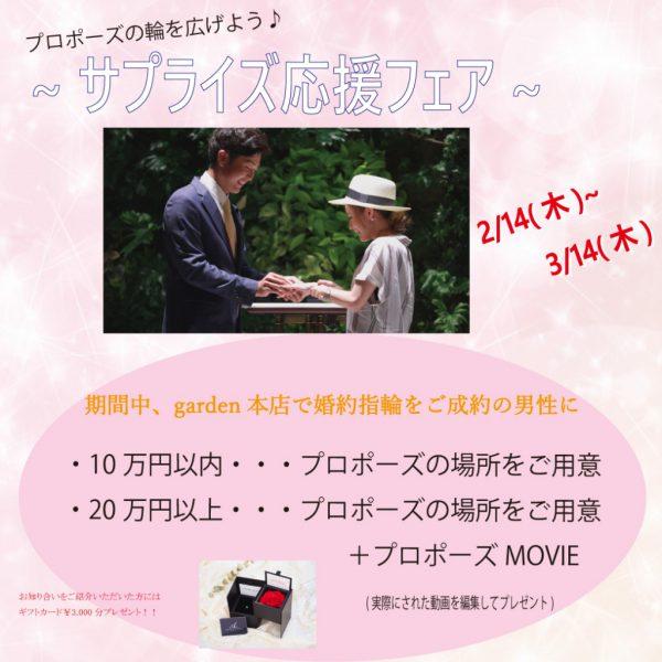 ✨ サプライズ応援フェア ✨  2/14~3/14まで!