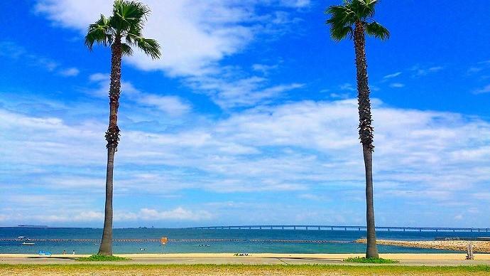 大阪のサプライズプロポーズ タルイサザンビーチ