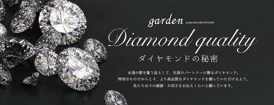 ダイヤモンドの秘密バナー