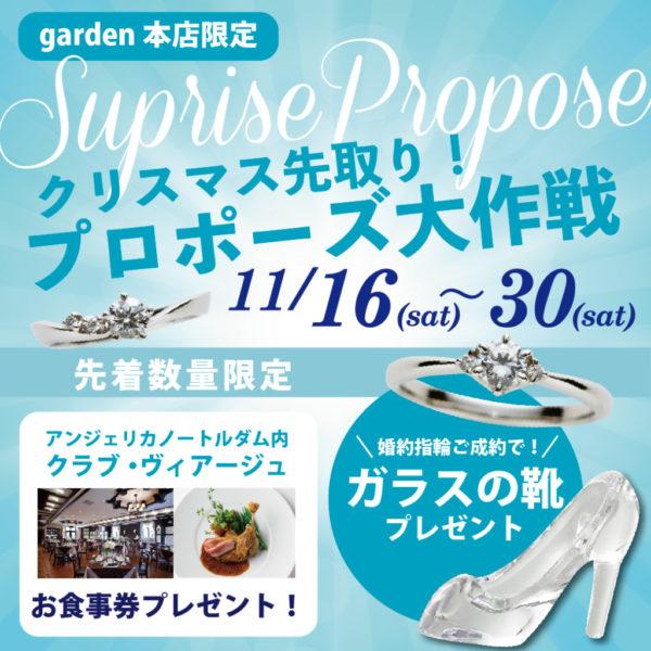 クリスマス先取り プロポーズ大作戦11/16~11/30